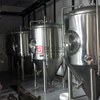 500L beer fermentor bar mini stainless steel fermentation tank beer brewing equipment for sale