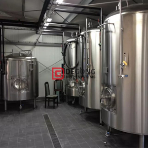 2000L Stainless Steel Double Jacketed Customized Unitank/Fermentation Tanks for Sale