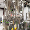 500L 5bbl customized best beer making equipment in europe
