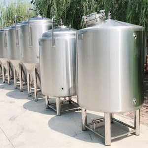 1000L 2000L Model popular size FV(Fermenting vessels) maturing tank unitanks with brite tanks